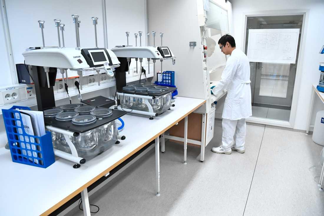 Astra Zeneca har börjat masstillverkning av sitt vaccin. Arkivbild.