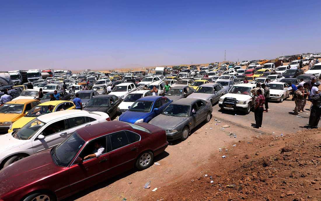 En halv miljon flyr Mosul.