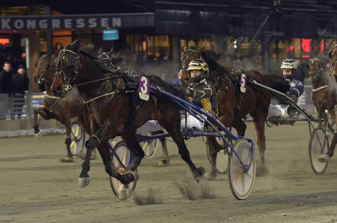 Sandra Eriksson vinner V75 tillsammans med Farouk B.R.