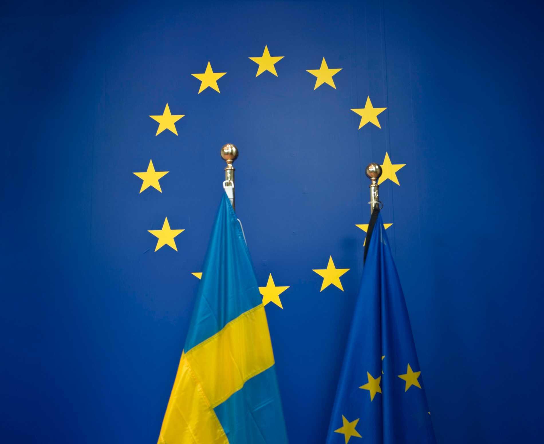 I maj är det dags att rösta i EU-valet.