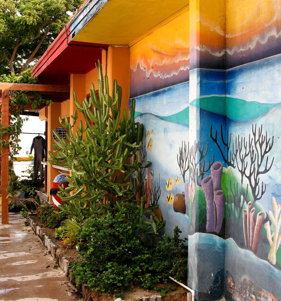 Husen är ofta färggranna, som det här dykcentret på Palm beach.