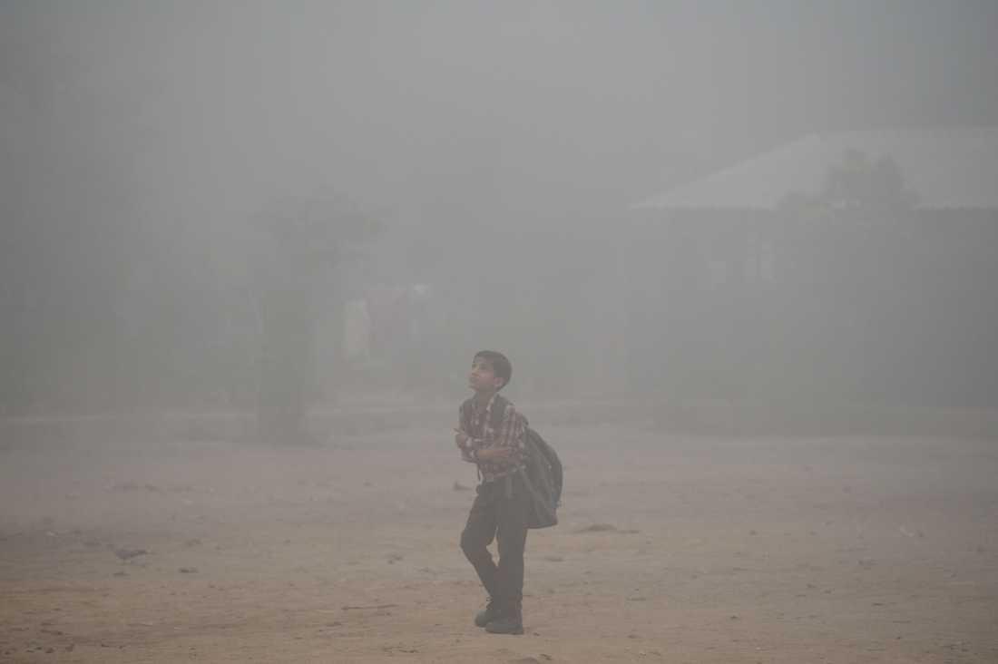 En skolpojke går längs en väg inbäddad i tjock smog.