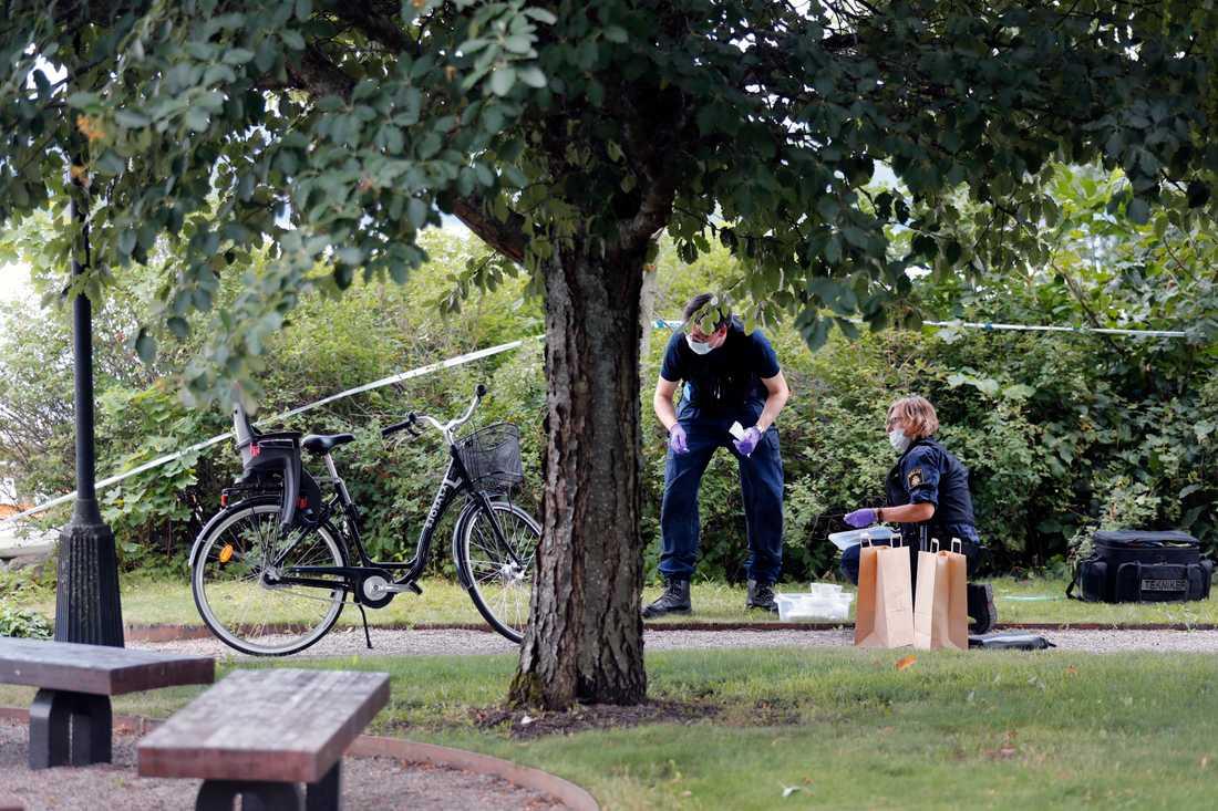 """Domkyrkan i Strängnäs har utsatts för en stöld av föremål till ett """"högt värde"""", uppger polisen. Polisens tekniker intresserar sig för en cykel."""