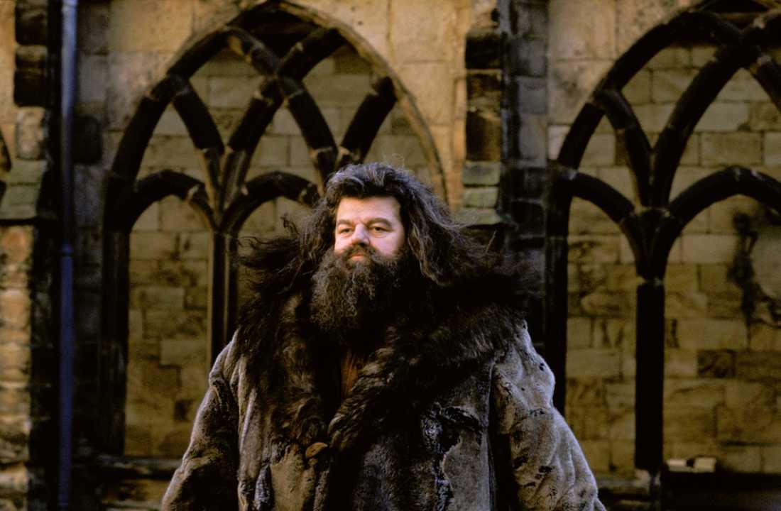 Så ser Hagrid ut på riktigt.