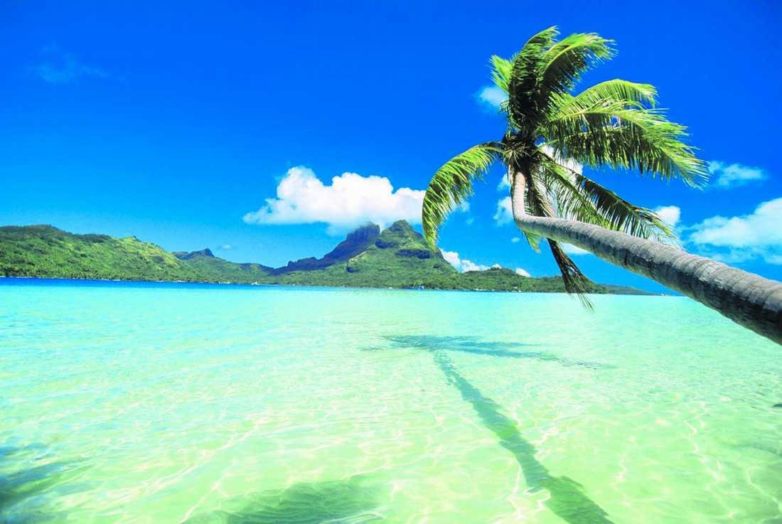 Söderhavet På paradisön Bora Bora fick prins Daniel och kronprinsessan Victoria njuta av miljön och varandra. Foto: LOTTE FERNVALL, THINKSTOCK