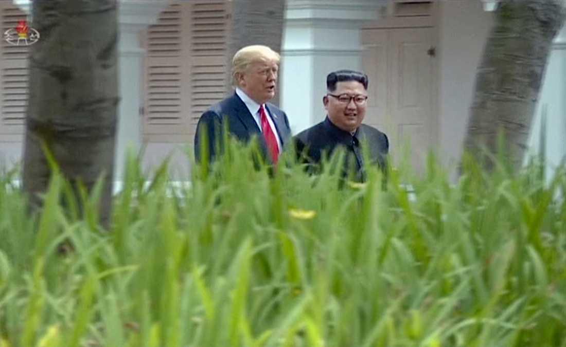 Nordkoreas ledare Kim Jong-Un och USA:s president Donald Trump under toppmötet i Singapore i juni förra året. Arkivbild.