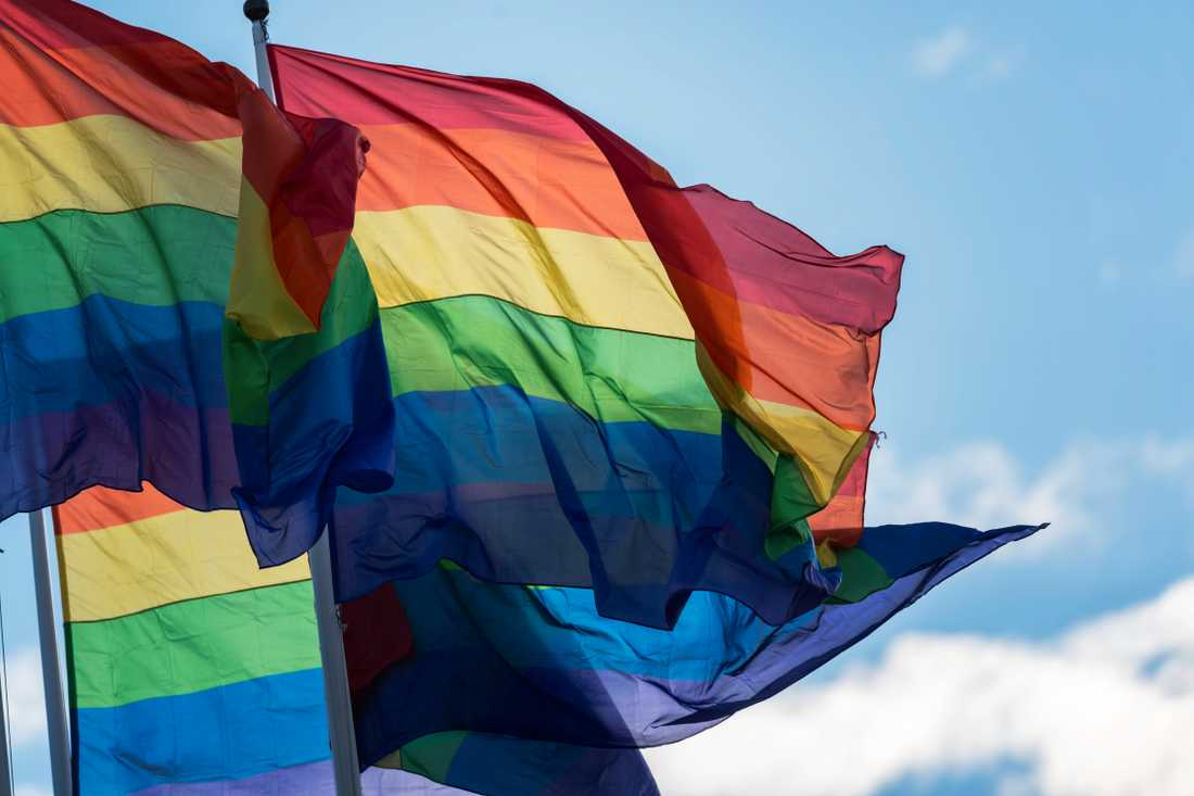 Prideflaggor. Arkivbild.