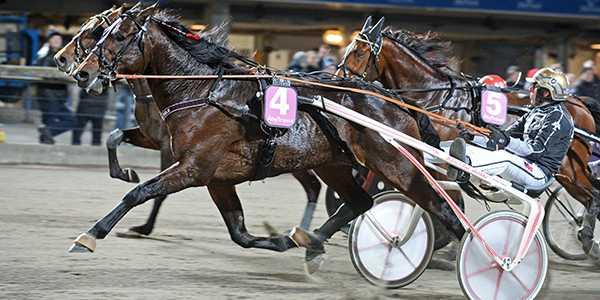 Treåriga löftet Velten Versailles vann V75–4 på Åbytravet och 125 000 kronor.