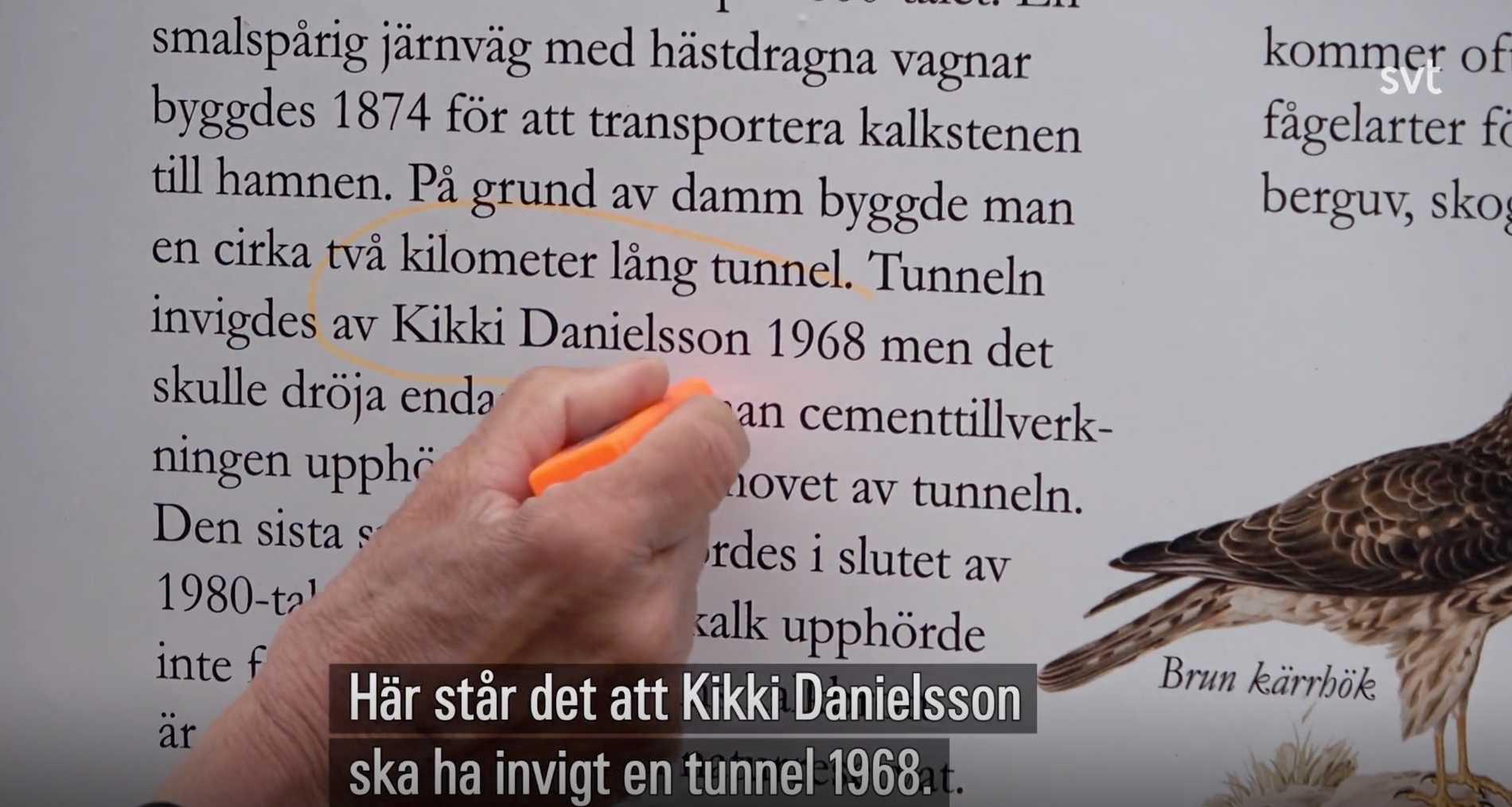 Blev kalkbrottet verkligen invigt av Kikki Danielsson?