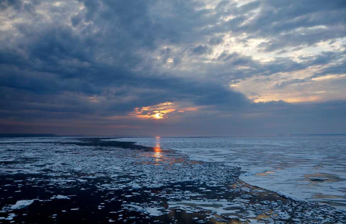 Solen sänker sig över havsisen i norra Kanada. Istäcket i Arktis fortsätter att minska år efter år.