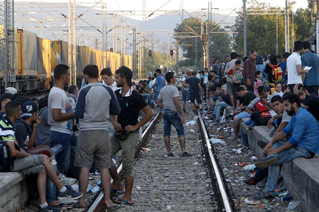 Staden Gevgelija i södra Makedonien har blivit en knutpunkt för flyktingar från Mellanöstern som reser mot Serbien.