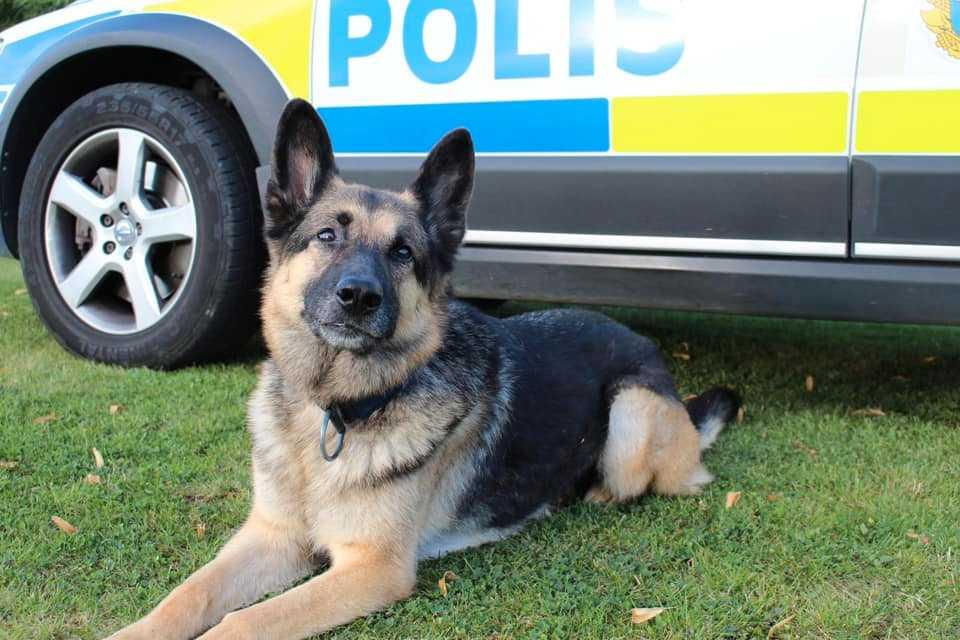 """""""Nu ska han få välförtjänt vila"""" skriver Polisen Västmanland."""