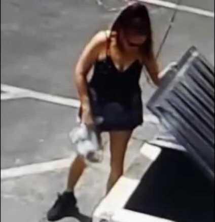 Kvinnan dumpade sju nyfödda valpar vid en soptunna.