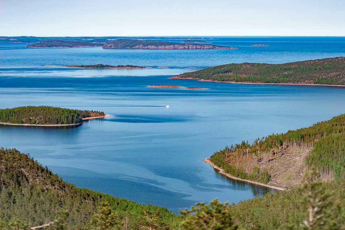 Höga kusten lockar besökare som vill vara nära naturen.
