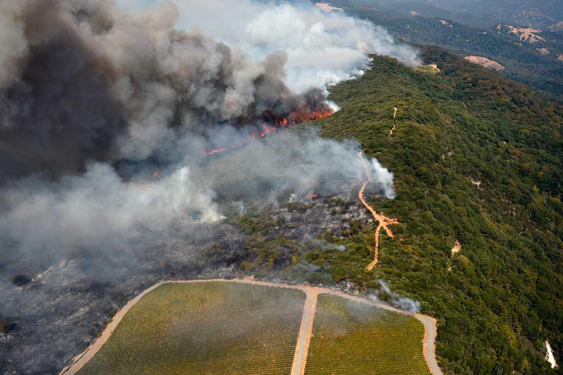 Flygbild över bränderna i vindistrikten öster om Napa.