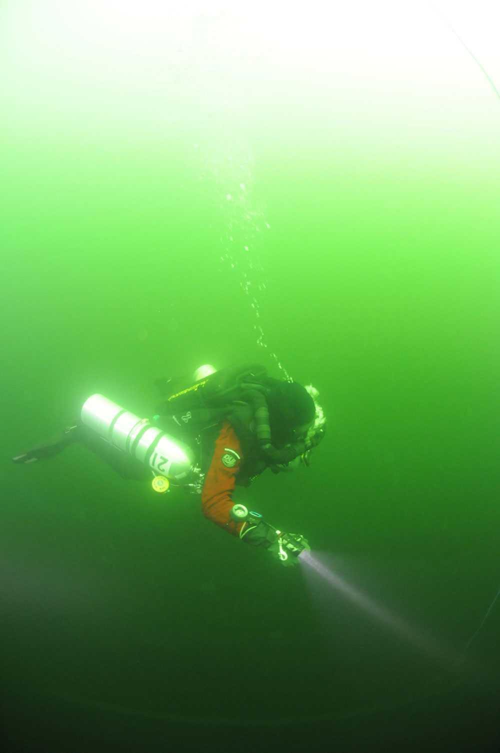 En dykare på väg ner mot Östersjöns botten.