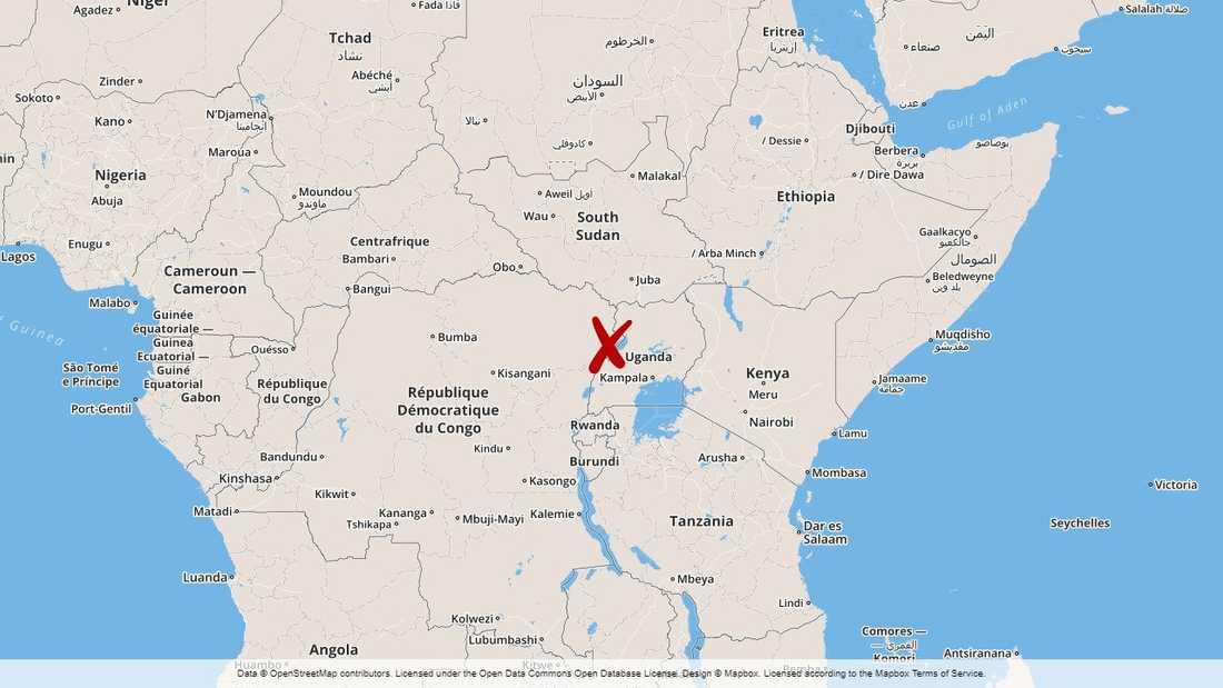 Den ökända extremiströrelsen ADF misstänks ligga bakom dåden i östra Kongo-Kinshasa.