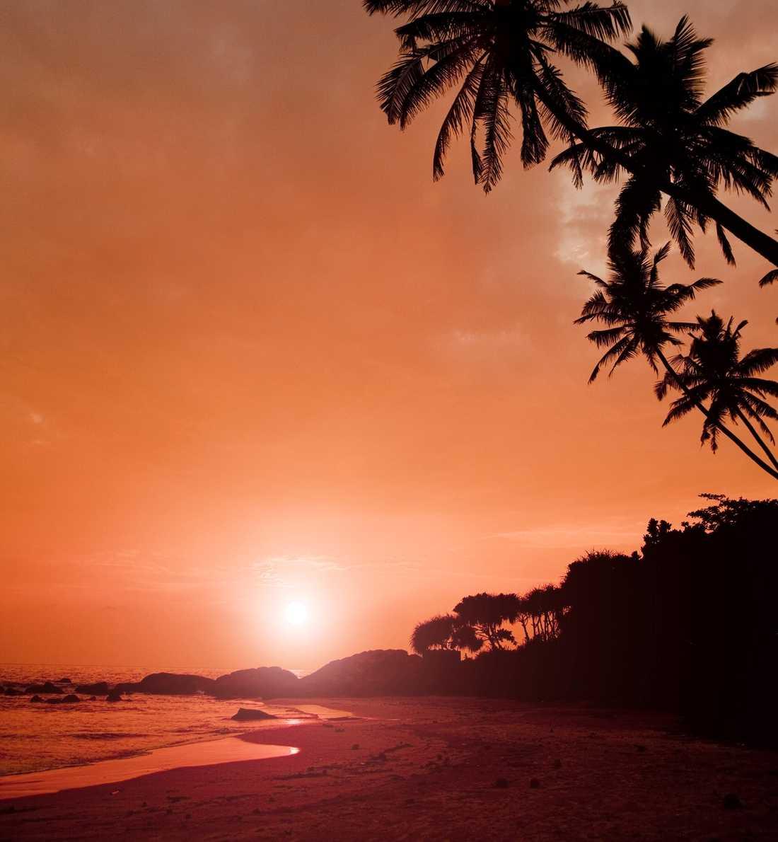 Den charmiga staden Galle är kolonialnostalgi, fyra kilometer strand och en kvällssol som drunknar i Indiska oceanen. Mysigaste stoppet på charterkusten.
