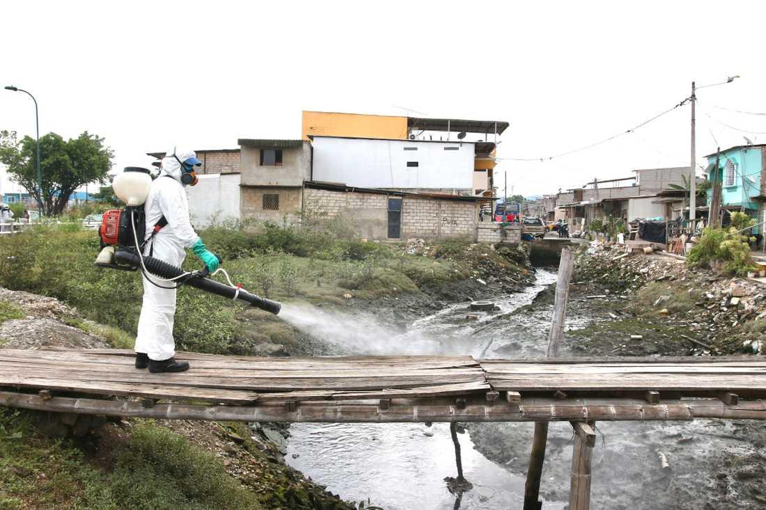 En person sprutar desinfektionsmedel vid en bro i Cristo del Consuelo. Arkivbild.