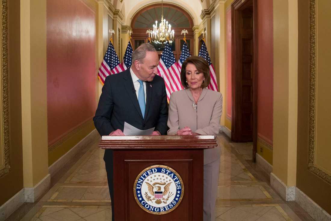 Chuck Schumer, demokratisk minoritetsledare i senaten, och partikamraten Nancy Pelosi, som är representanthusets talman, ger sina svar på president Donald Trumps tal om läget vid USA:s södra gräns.