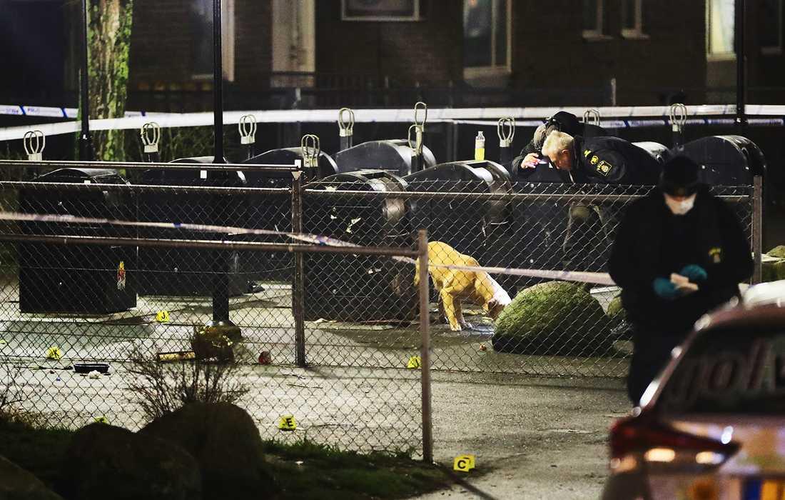 Den 23-årige mannen sköts till döds i ett bostadsområde i Malmö i mars 2017.
