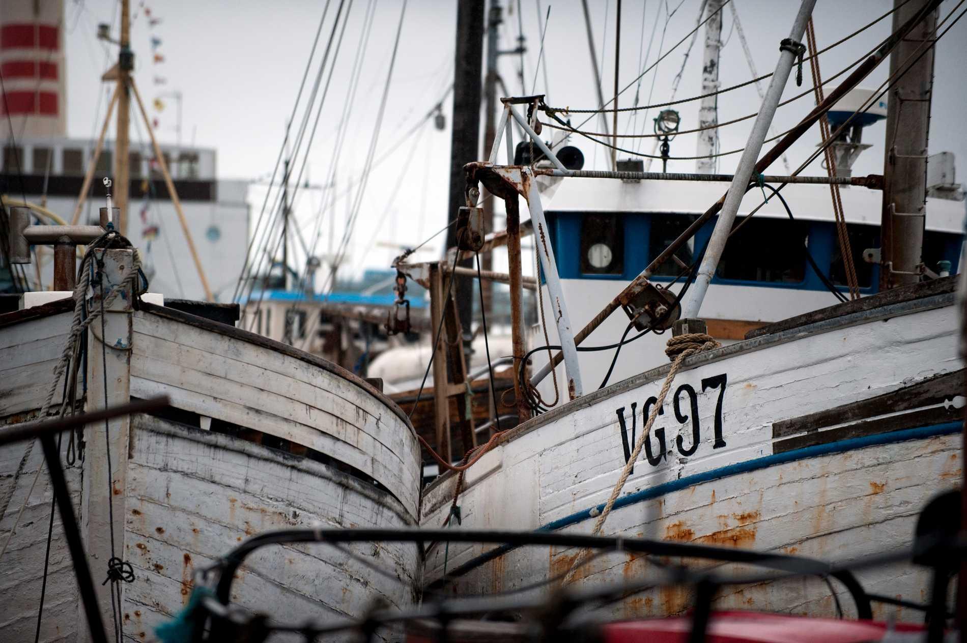 Fiskebåtar ska kameraövervakas, enligt ett förslag av Havs- och vattenmyndigheten. Arkivbild.