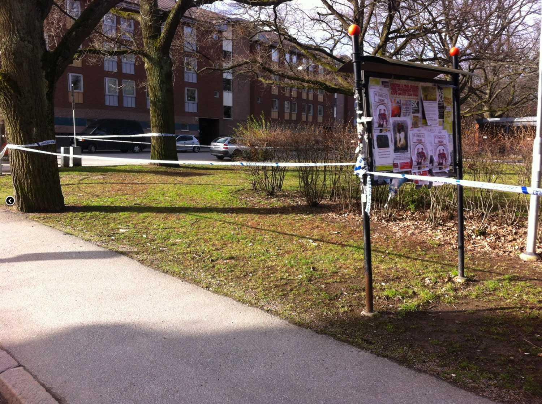 Här i Karl Johan-parken i Örebro hittades den våldtagna kvinnan av kroggäster i natt.