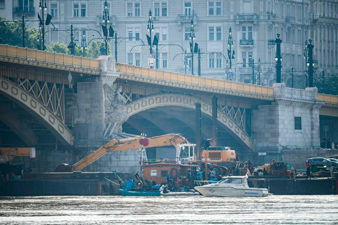Räddningspersonal på Donau vid platsen för olyckan.