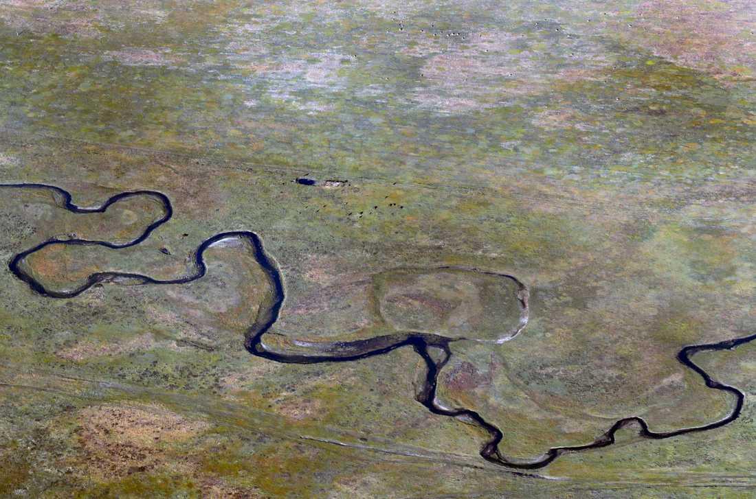 En uråldrig lärka hittades nästan intakt i delrepubliken Sacha i Ryssland. Arkivfoto från östra Sibirien.