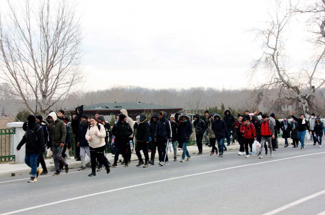 Migranter vandrar mot den grekiska gränsen i hopp om att beskedet om öppna gränser ska visa sig stämma.