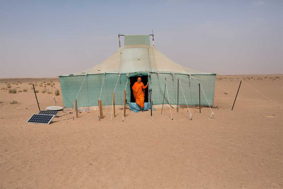 """Aum Kalfum, 61, bor med sin familj som nomad nära Mijek, en stad i den befriade delen av Västsahara som kontrolleras av Polisario.""""Oavsett hur hårt livet här är, så lever jag hellre här än i flyktinglägren"""". Foto: Johan Persson"""
