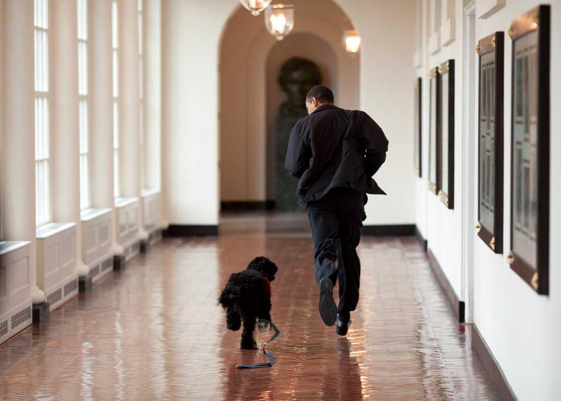 Obama med sin hund Bo.