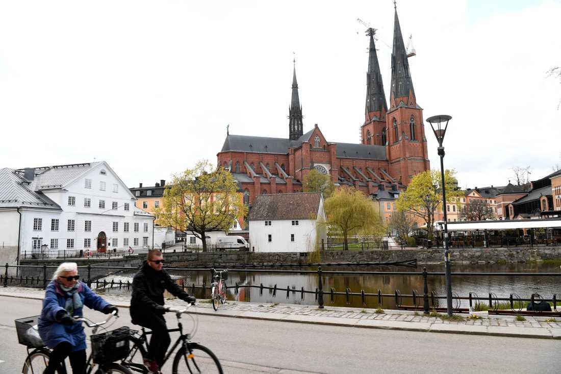 Utländska turisterna är tillbaka i Uppsala – trotsar pandemin.