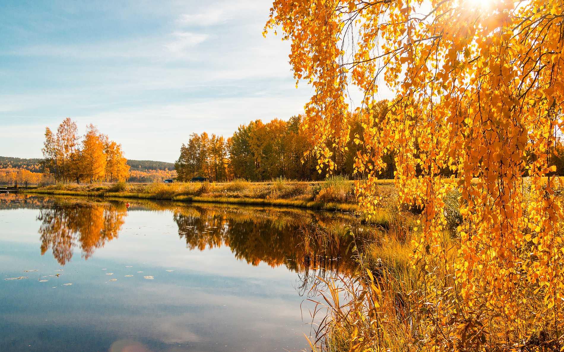 Naturreservat längs Sörmlandsleden.