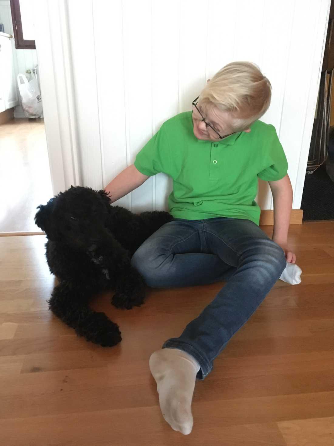 Dante var ute med familjens hund – en cockerpoo vid namn Putte – när han försvann. Putte hittades av en kvinnlig bilist vid vägen nedanför familjens hus. Sedan såg en bekant till familjen kvinnan med hunden och kände igen Putte.                                                                                 – Dagarna efter att Dante hade försvunnit var hunden mycket i hans rum, berättar Marie.