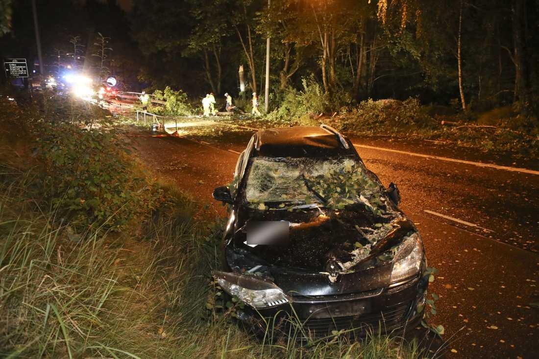 Träd föll över personbil i Göteborg.