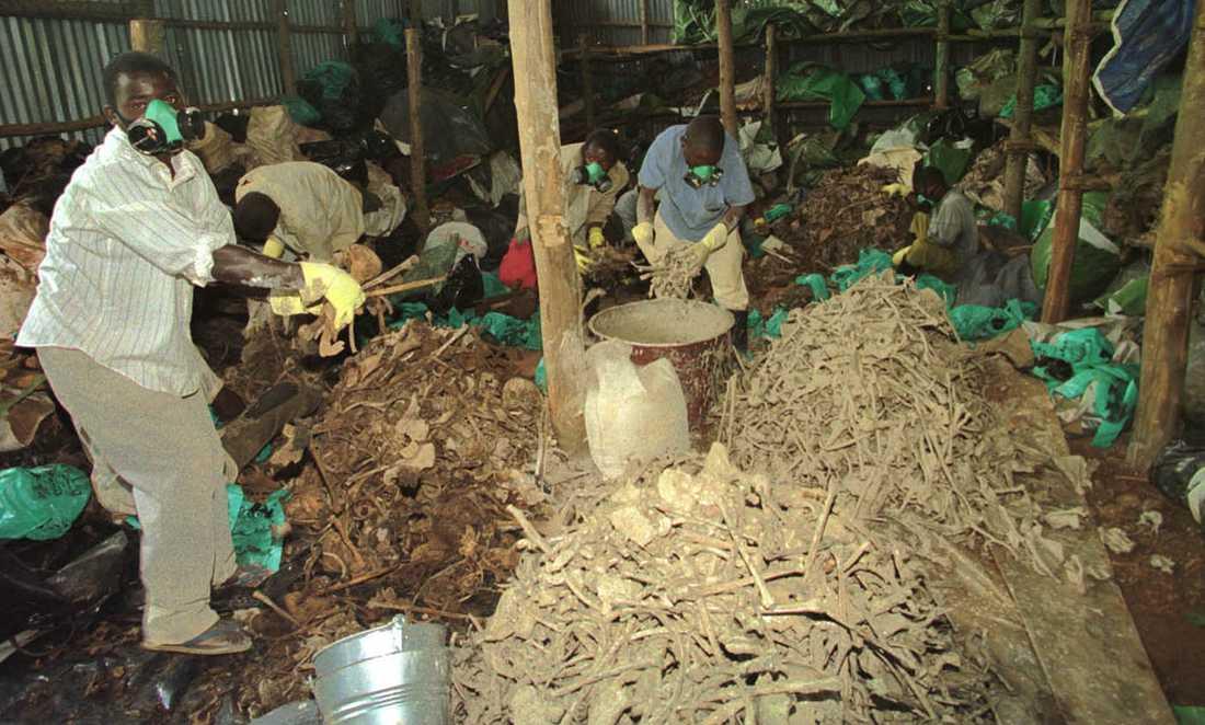 Under folkmordet i Rwanda år 1994 dödades mer än 800000 personer under tre månader.