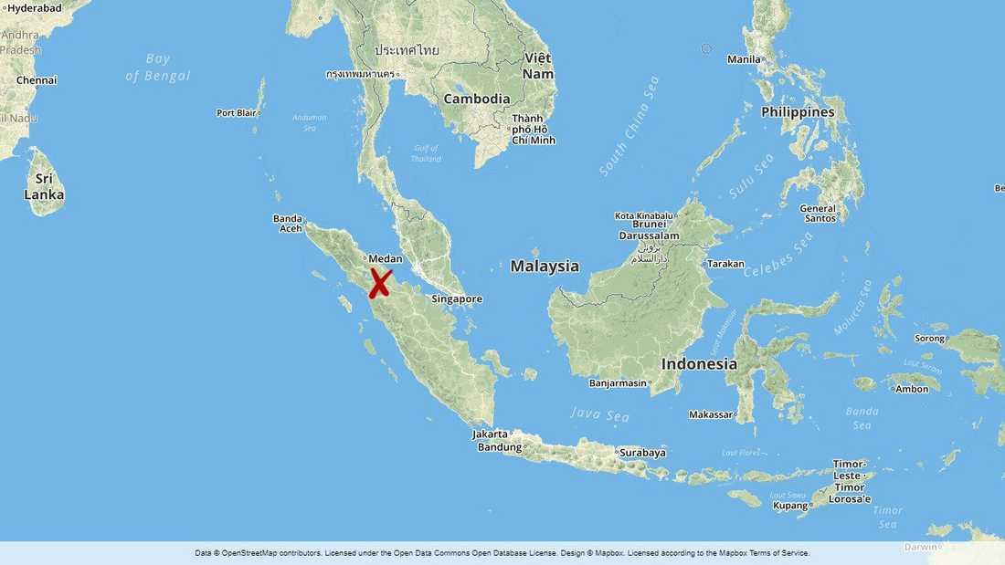 Två aktivister som medlade i en marktvist mellan ett palmoljeföretag och lokalbefolkningen har mördats på Sumatra i Indonesien.