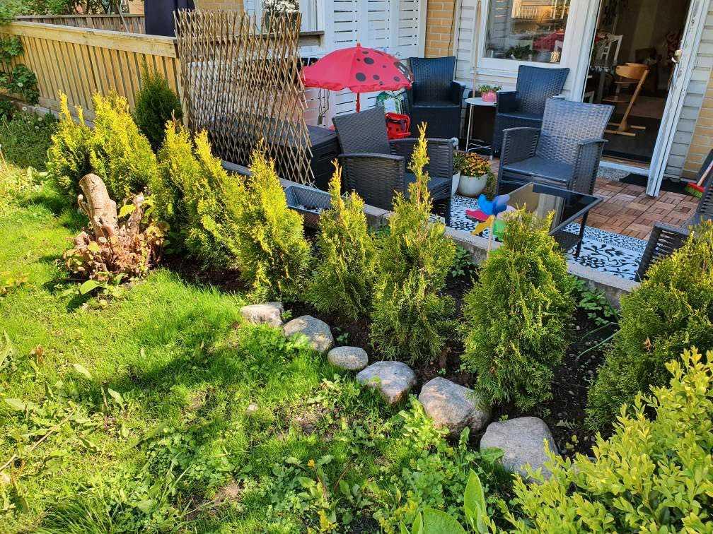 Andrea har fixat till området där busken tidigare var.