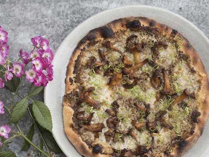 Pizza med kantareller och taleggio.