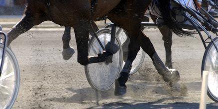 Trav365:s nye krönikör tittar bland annat på hur mycket grus travhästarna skvätter för att se om en häst kommer att vinna eller inte.