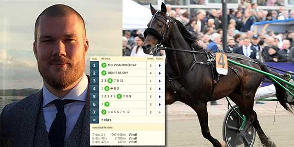 Ringostarr Treb var en av hästarna som vann på Christoffer Fuhrs system.