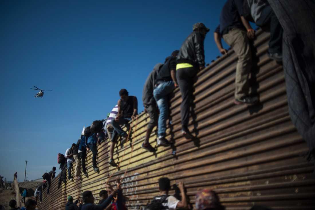 Migranter från centralamerika klättrar över ett staket nära gränsövergången El Chaparral i Tijuana.