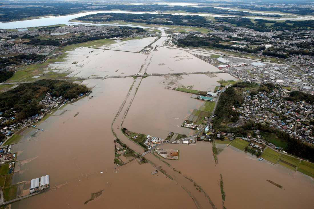 Översvämningar i staden Sakura.