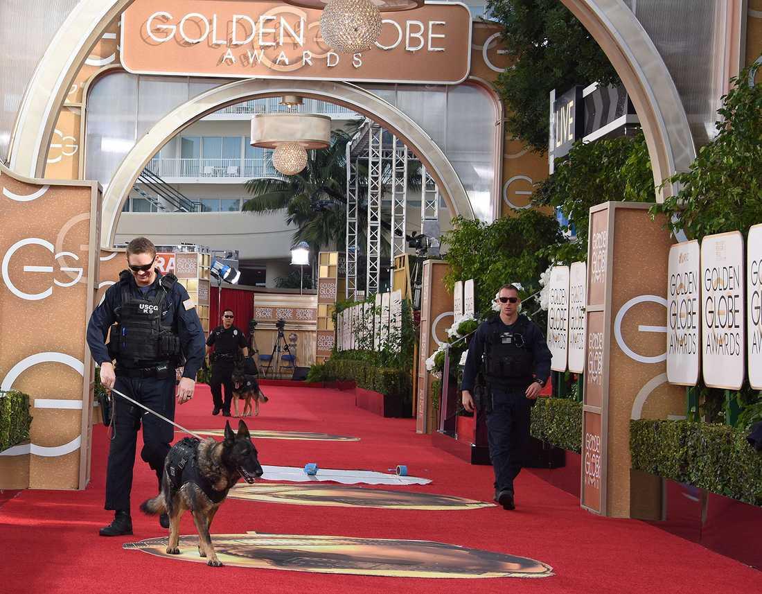 Hundar säkrade området innan kändisarna dök upp.