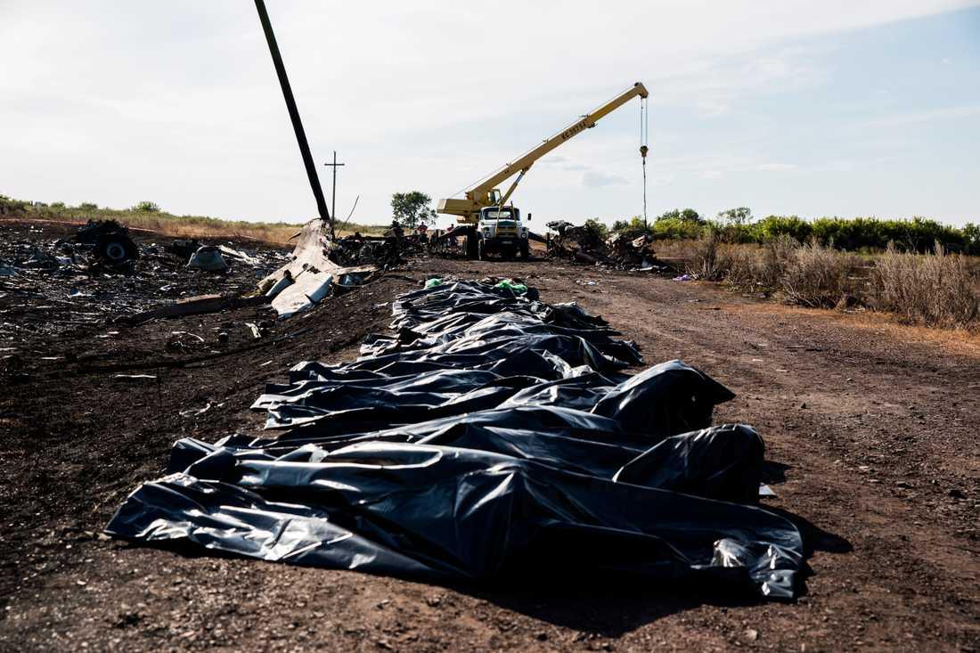 Plastsäckar med offer prydligt uppradade.