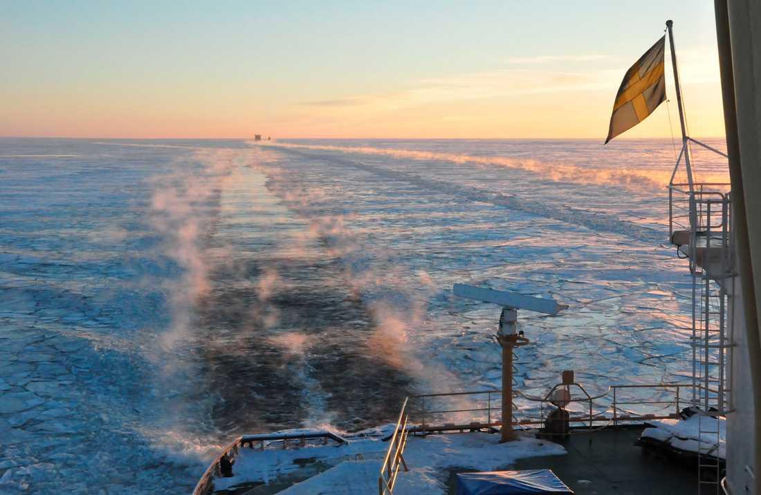 Isbrytarsäsongen har startat – en senare premiär än vanligtvis. Arkivbild.