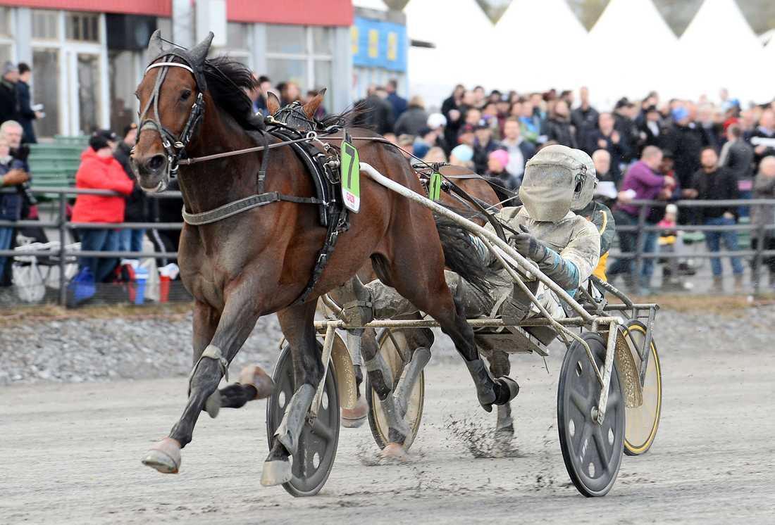 Propulsion vann på Umåkers silverdivision i fjol.
