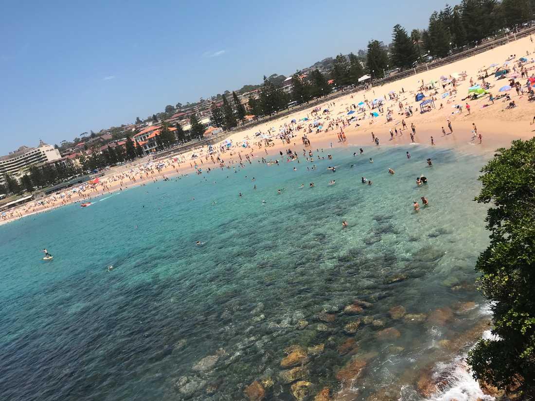 Sydneystranden Coogee en het januaridag under det australiska sommarlovet.