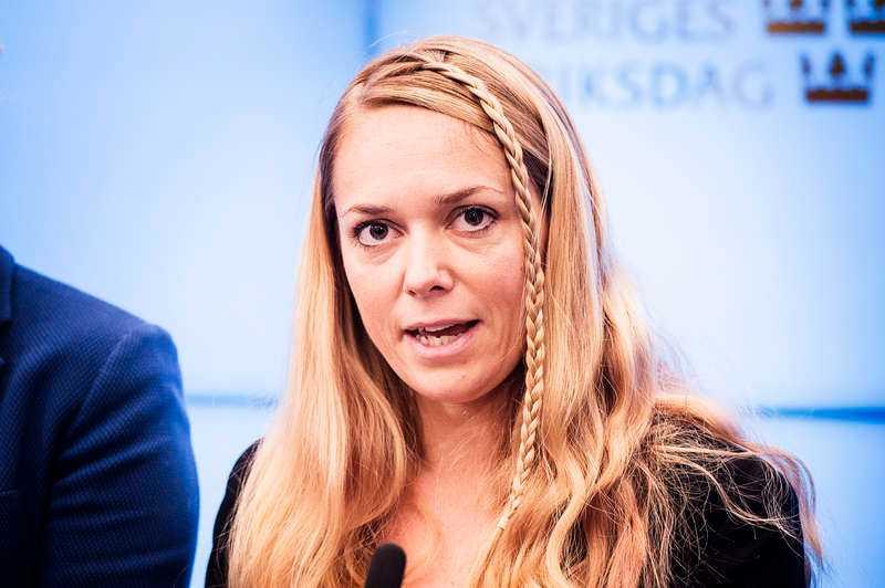 Johanna Jönsson, riksdagsledamot